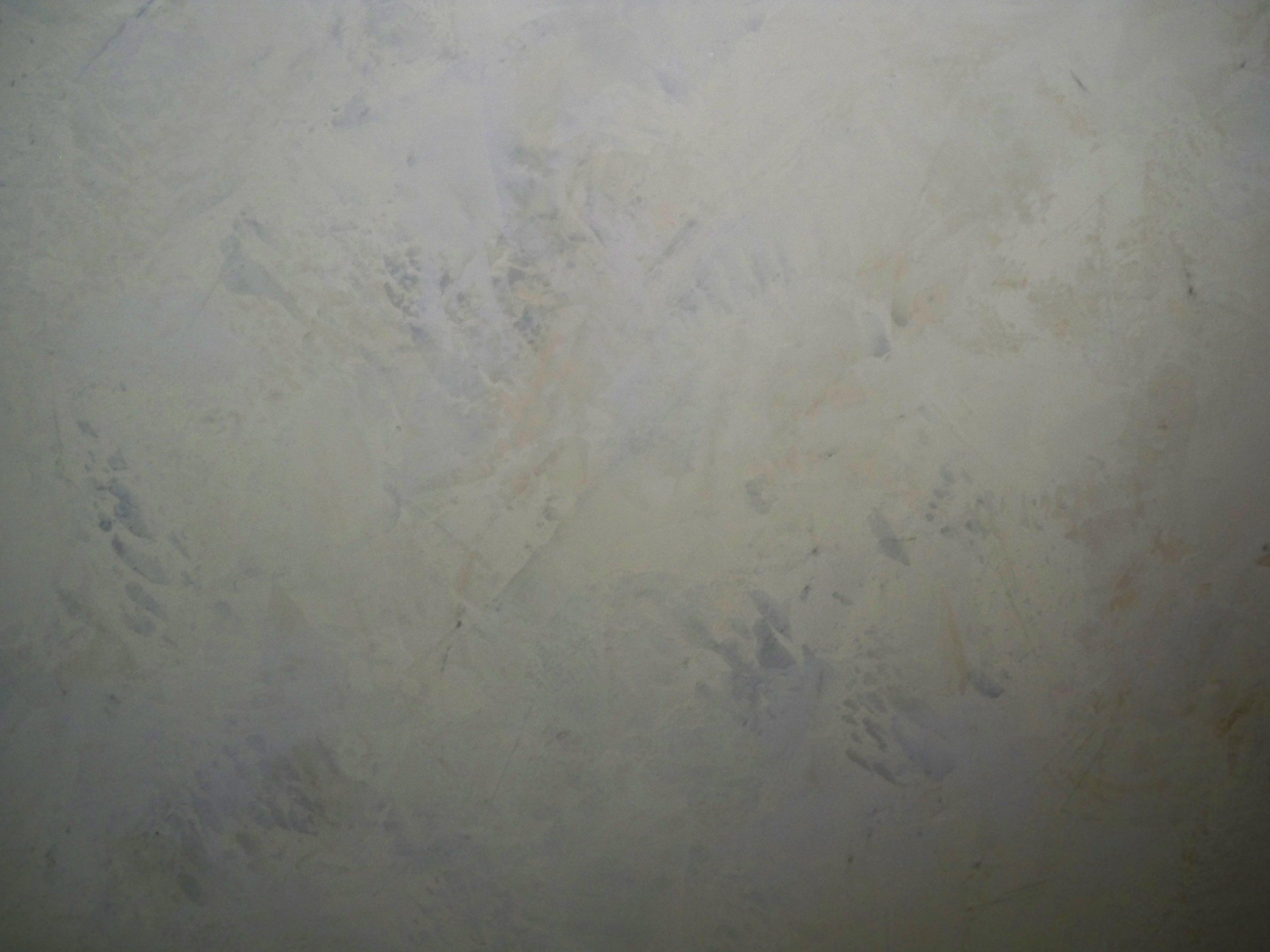 Murals By Marg Silver Venetian Plaster 4.JPG