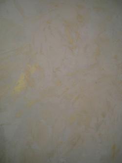 Murals By Marg Front Foyer Venetian Plaster 21.JPG