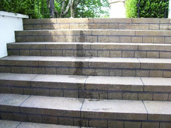 Murals By Marg hand Painted concrete steps 2.JPG