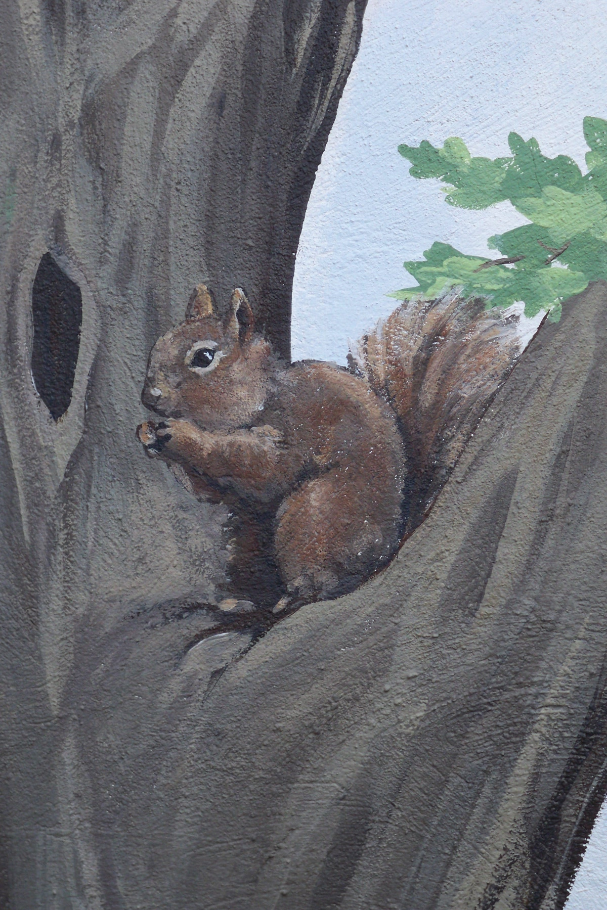 Murals By Marg squirrel.jpg