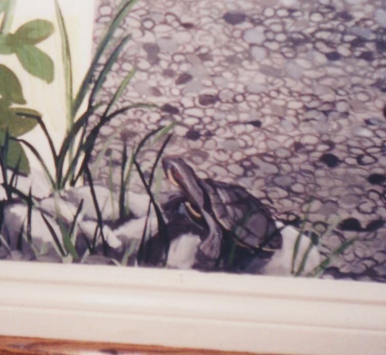 Murals By Marg Morning Glory Turtel Detail 3.jpg