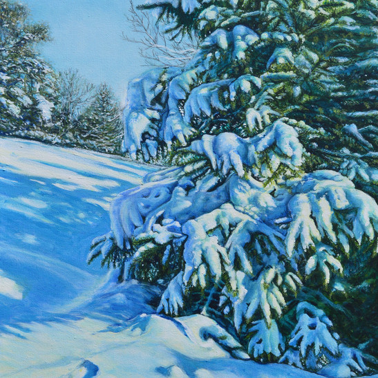 Margaret Cresswell Walk on a Wintery New