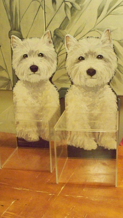 Westies Rescue Donation Boxes.jpg