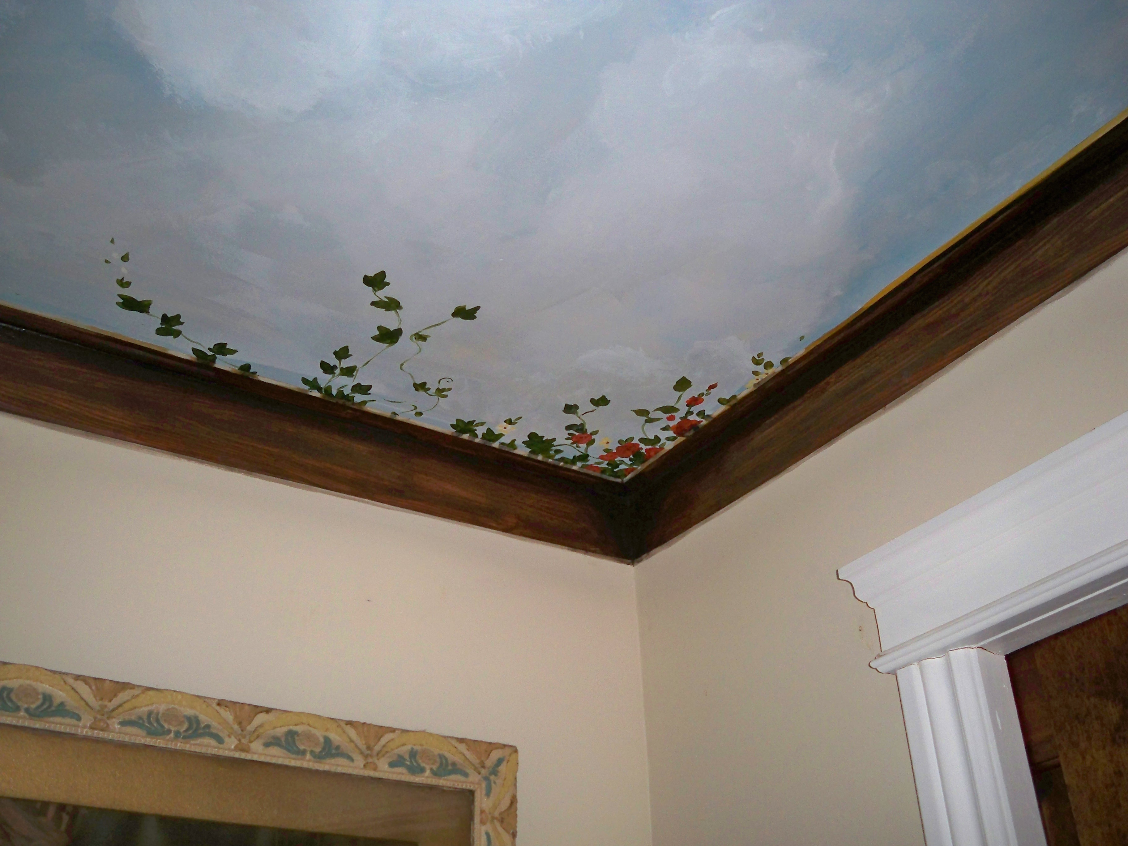 Murals By Marg Ceiling Mural 33