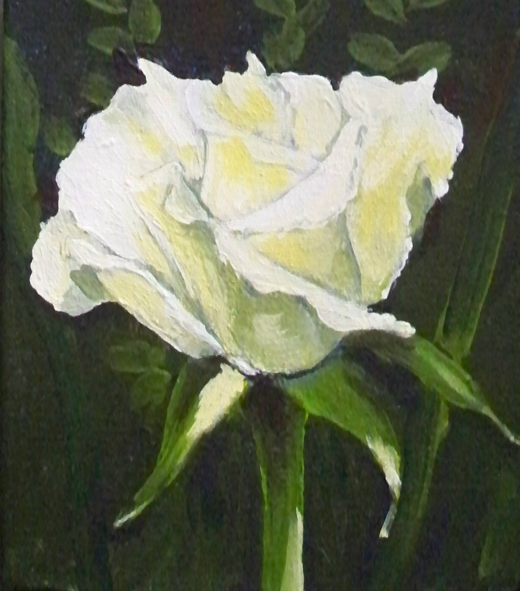Murals By Marg white roses 2