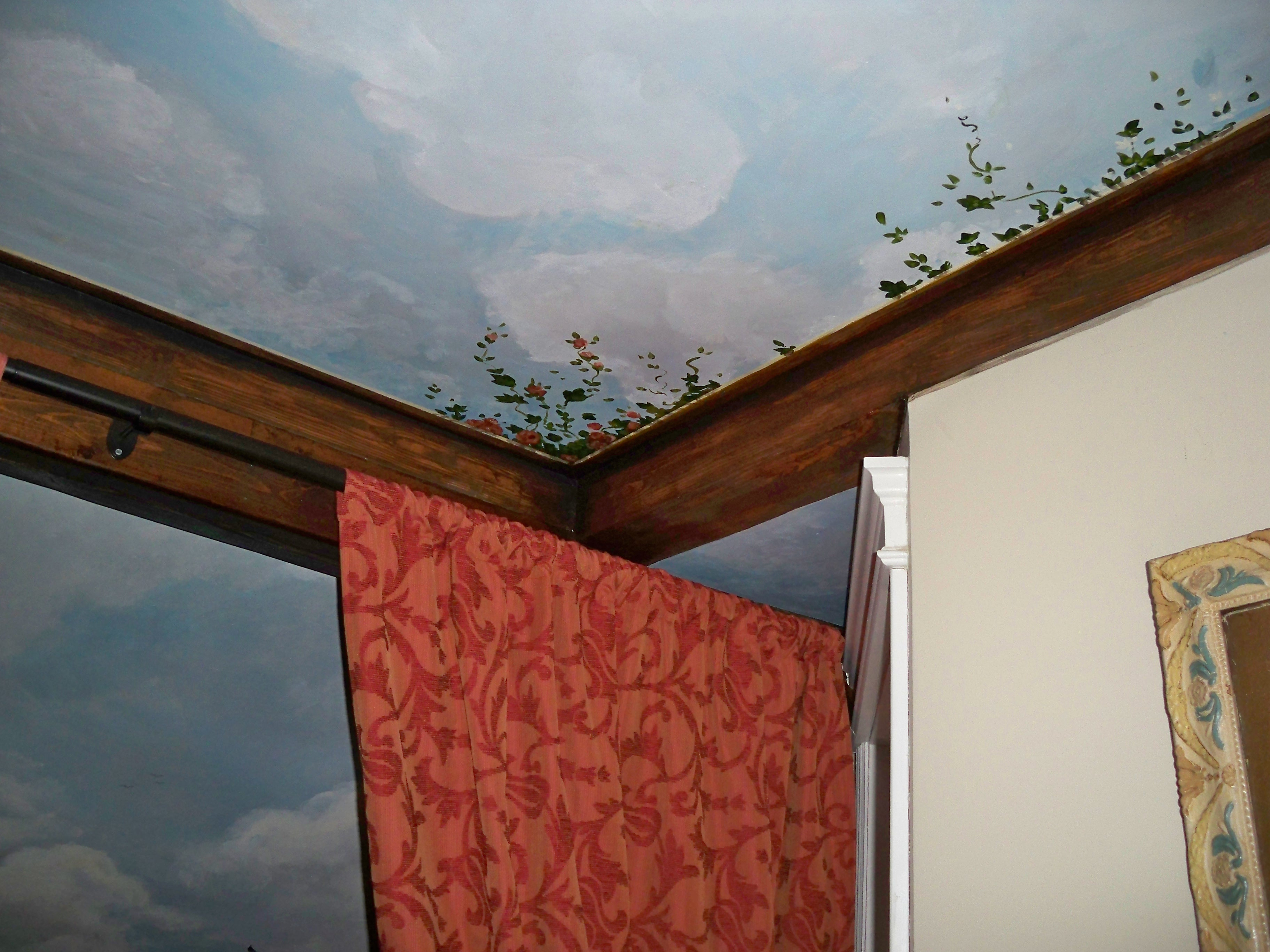 Murals By Marg Ceiling Mural 25