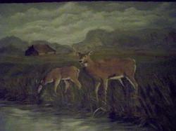Murals By Marg deer floor mat.JPG