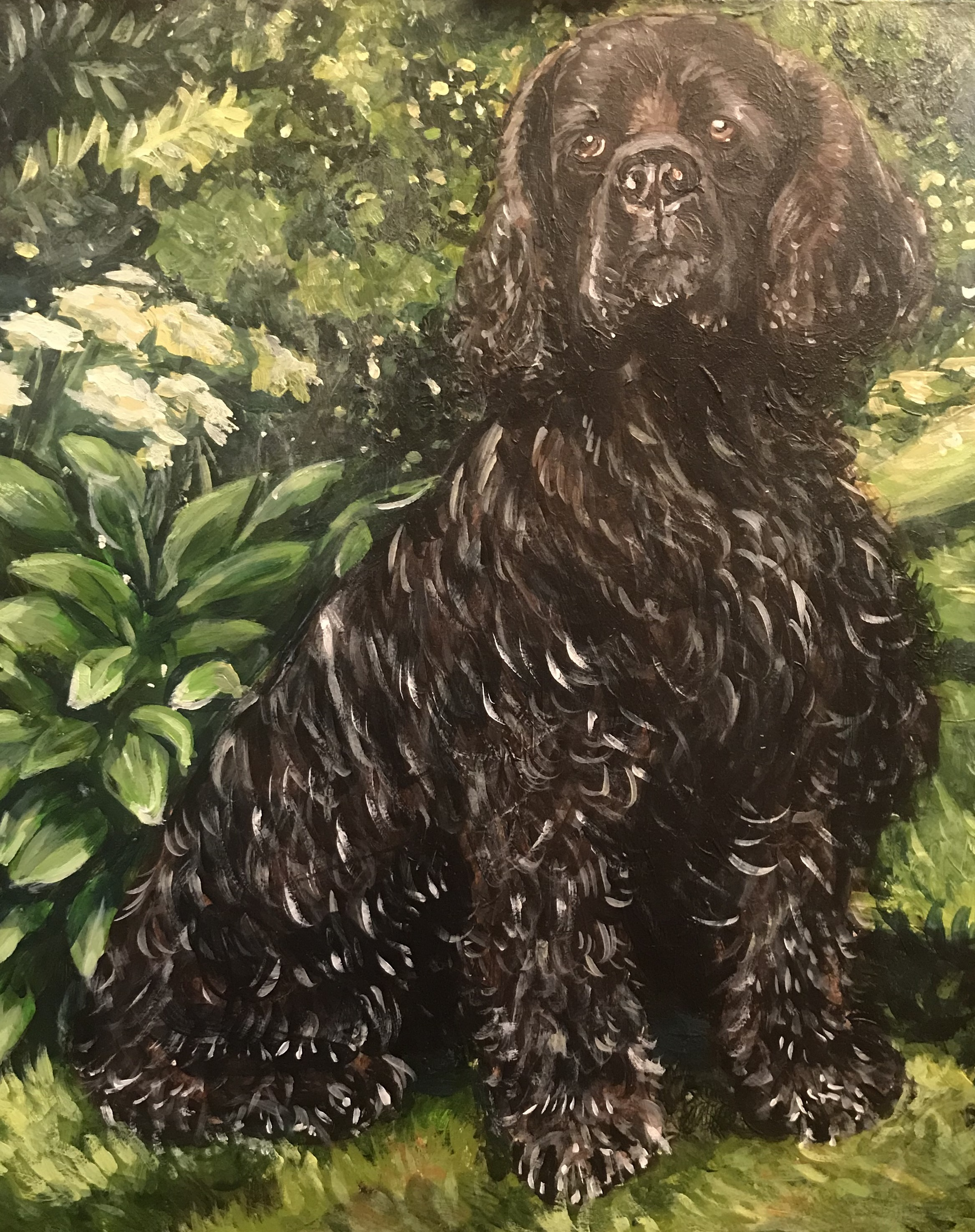 Murals By Marg Dog Portrait 1