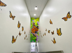 Murals By Marg Carrot Common Path of the