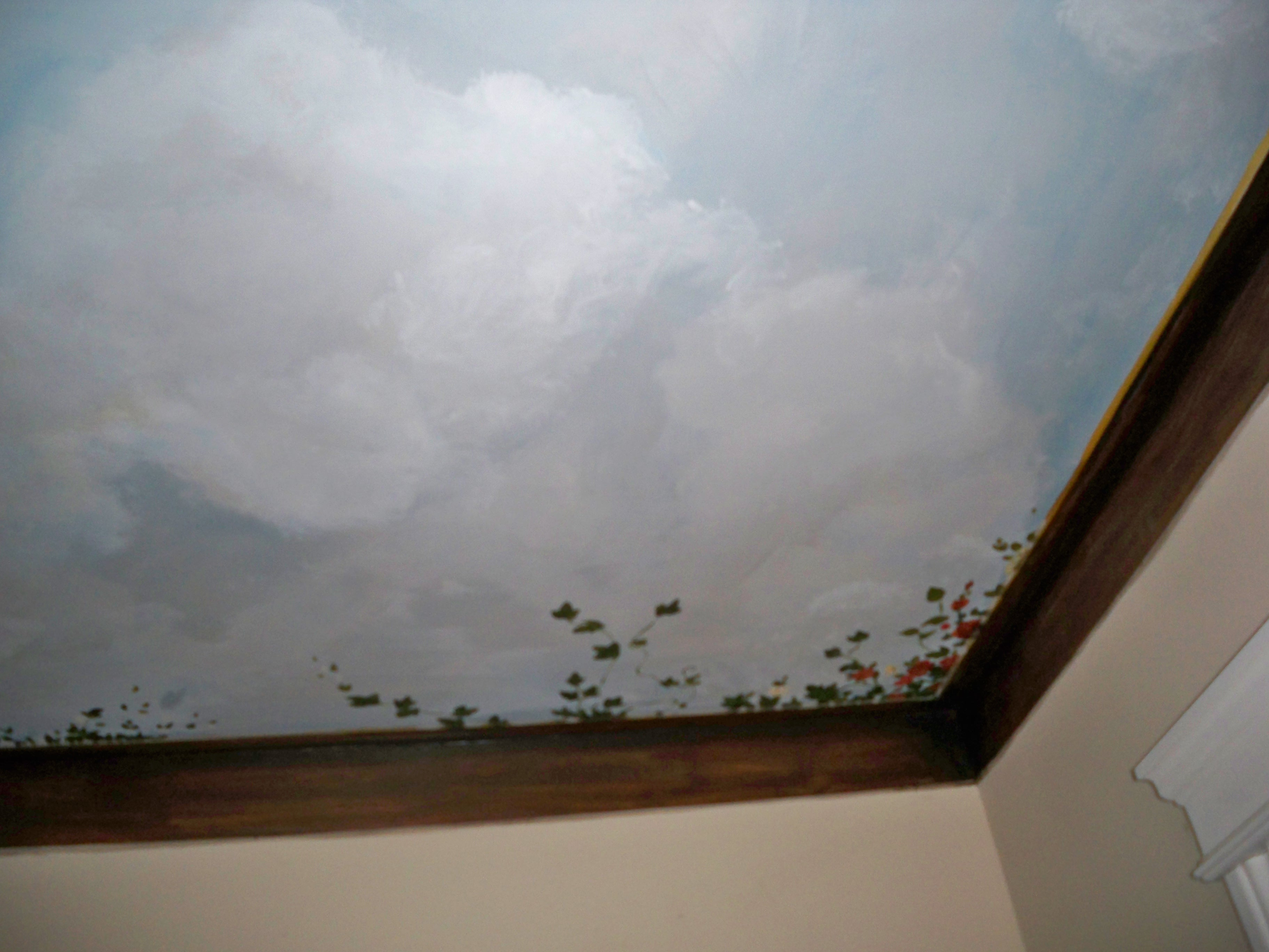 Murals By Marg Ceiling Mural 27