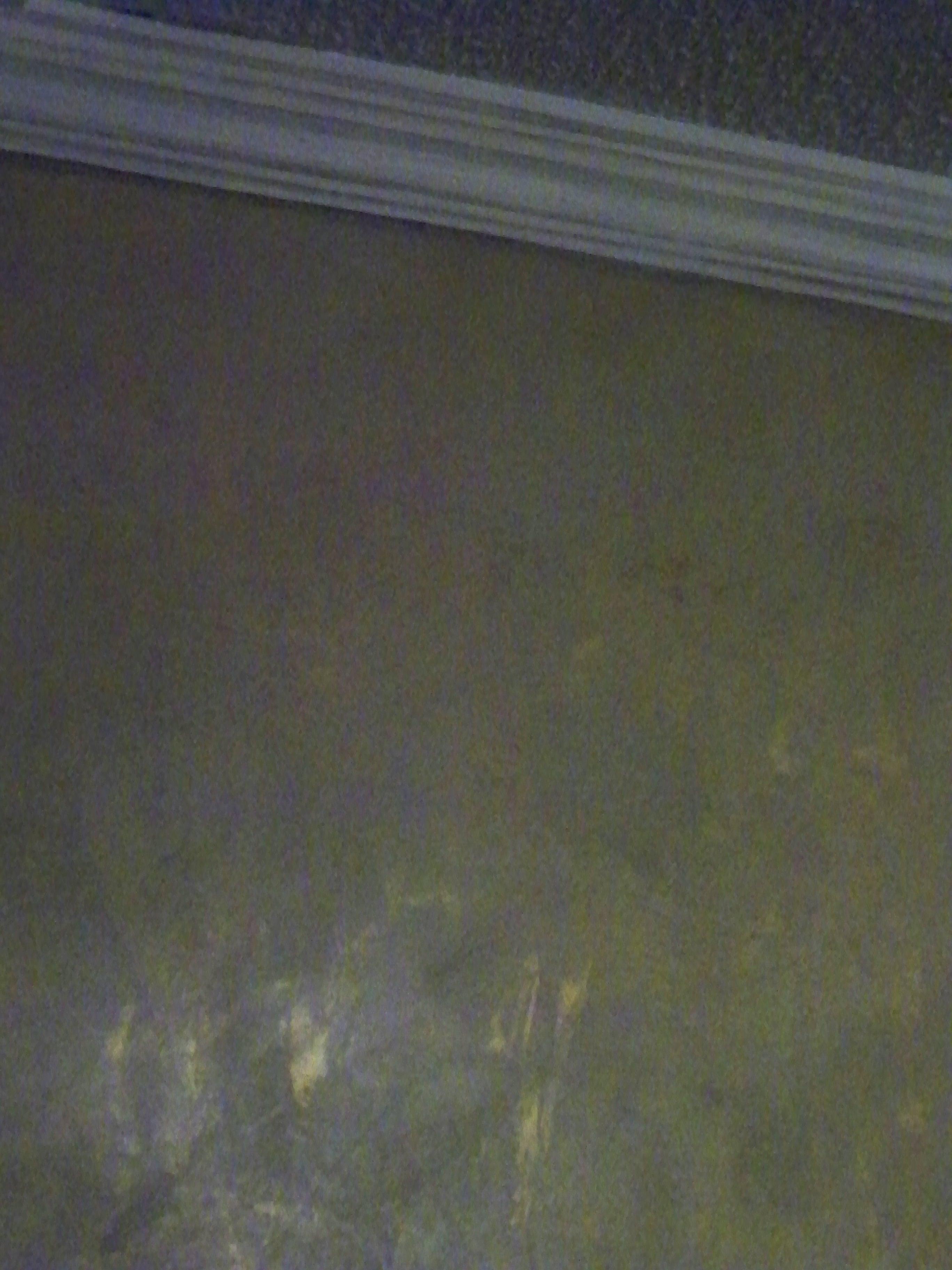 Murals By Marg Front Foyer Venetian Plaster 16.JPG