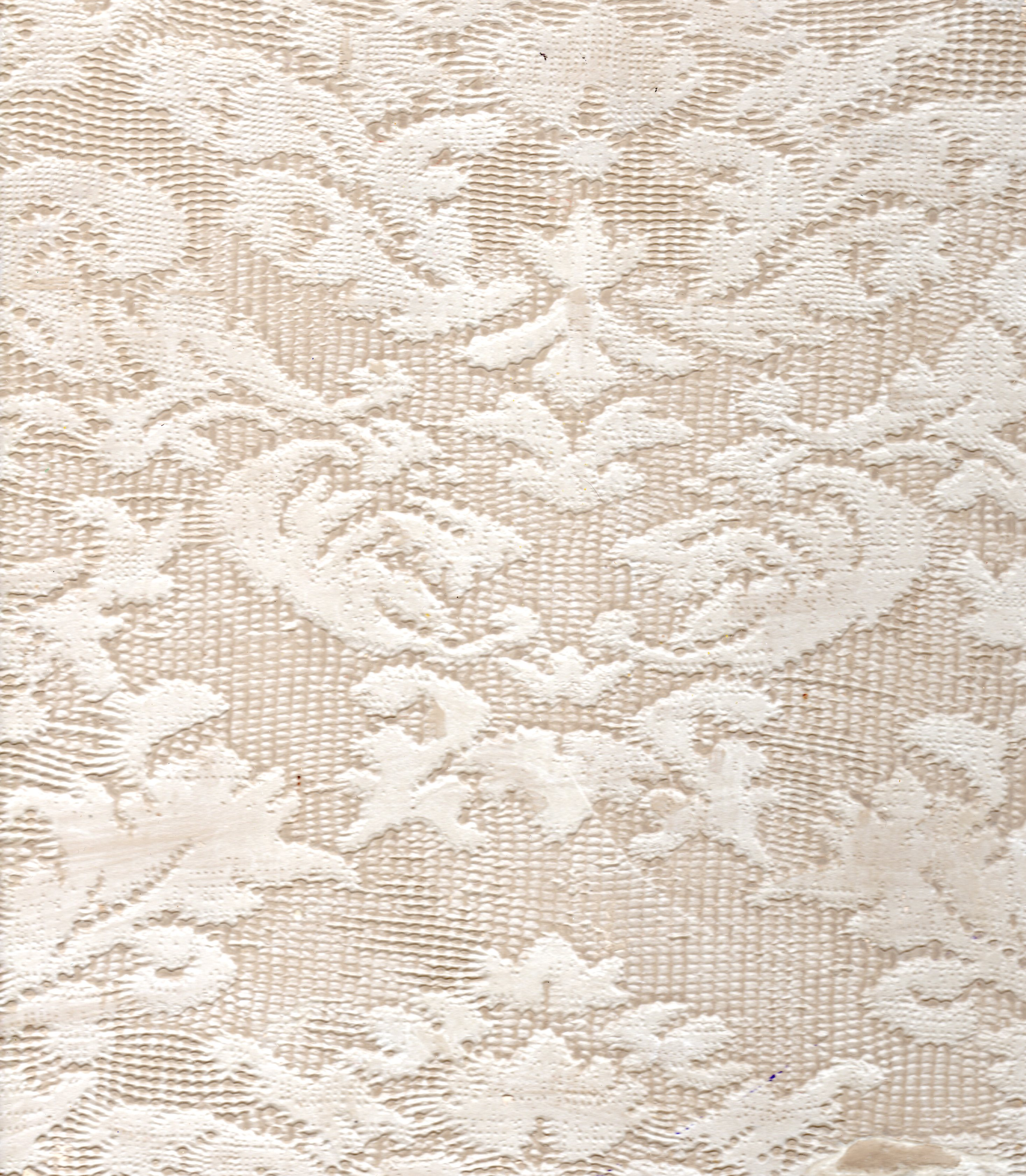 Murals By Marg Decorative Plaster Lace 4.jpg