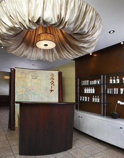 Murals By Marg Commercial Spa Murals 2009 1.jpg
