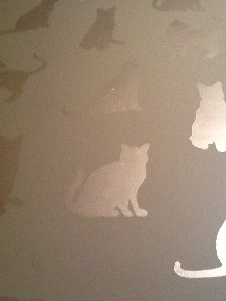 Murals By Marg Hand painted wallpaper cats 1_edited.JPG