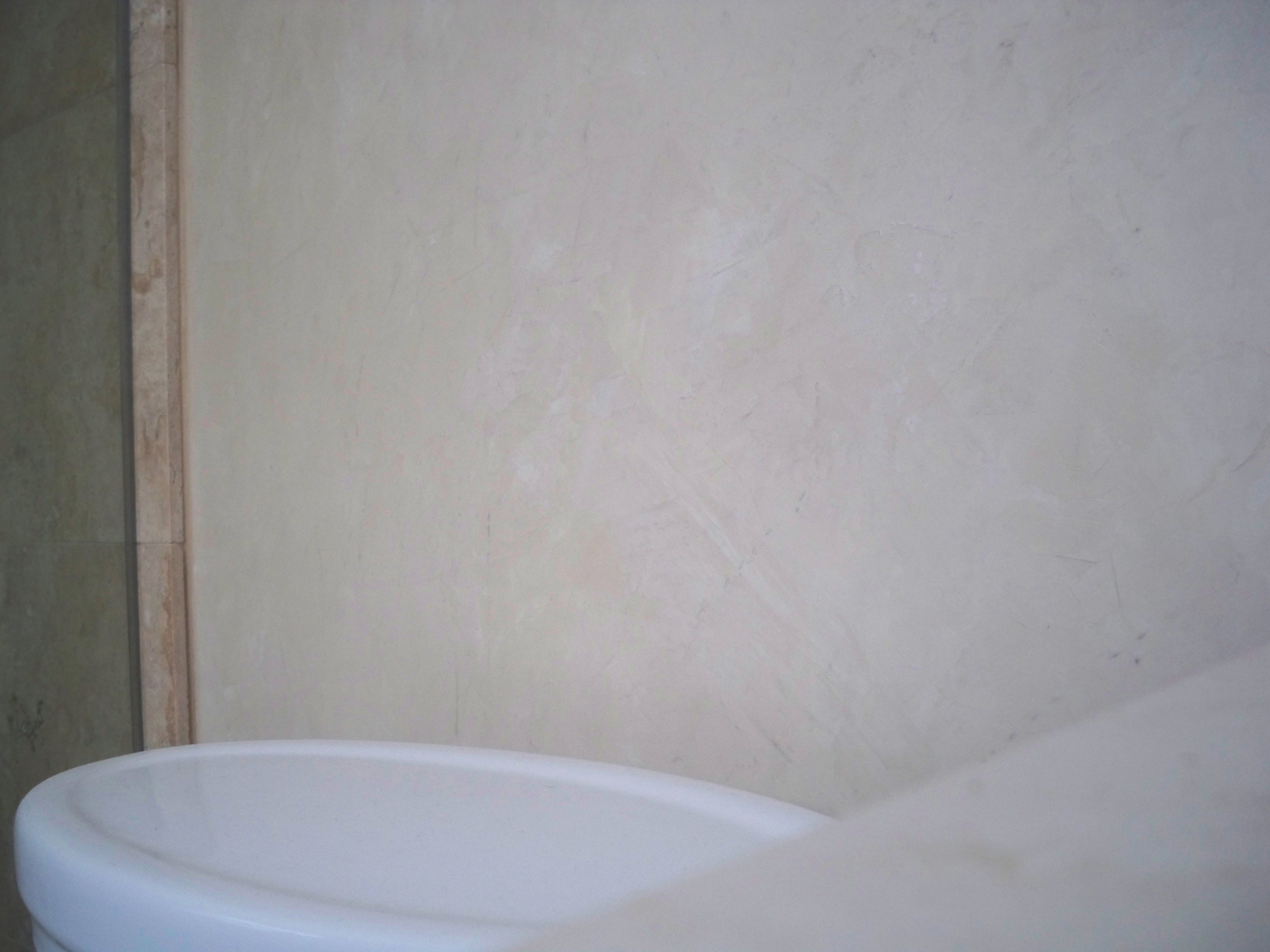 Murals By Marg Venetian Plaster Master Bath 9.JPG