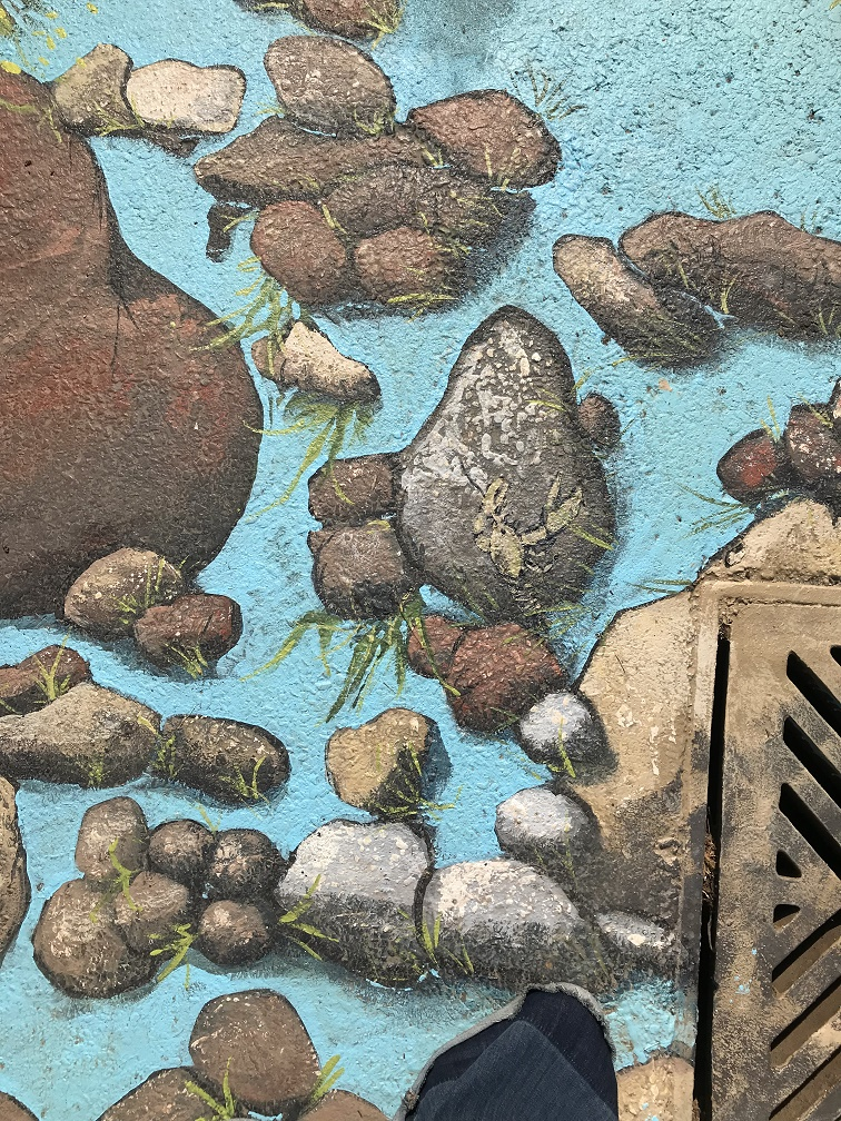 Murals By Marg King's Buried Treasure