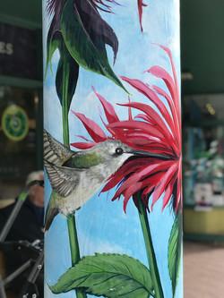 Murals By Marg Carrot Commons Hummingbir