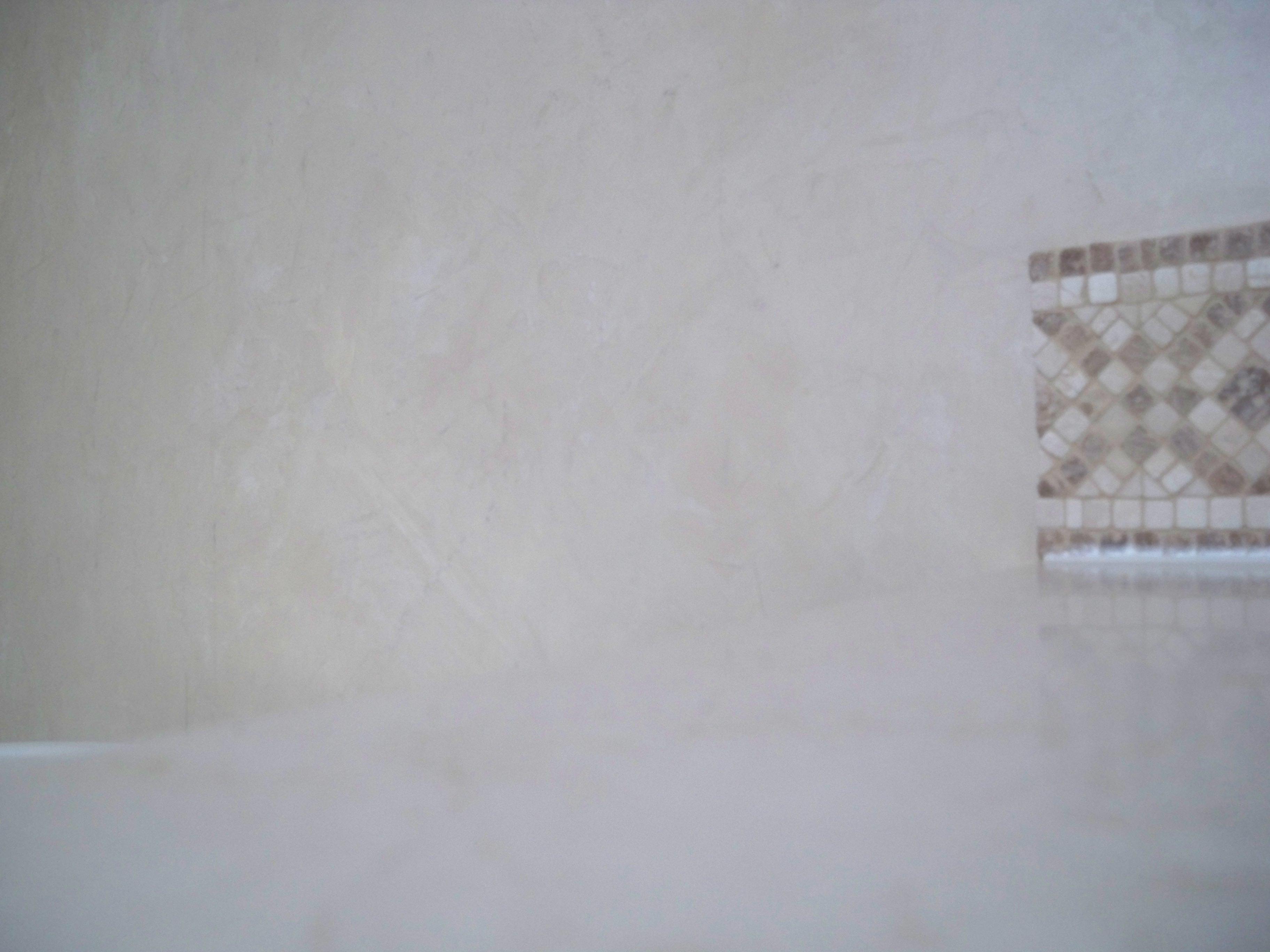 Murals By Marg Venetian Plaster Master Bath 11.JPG