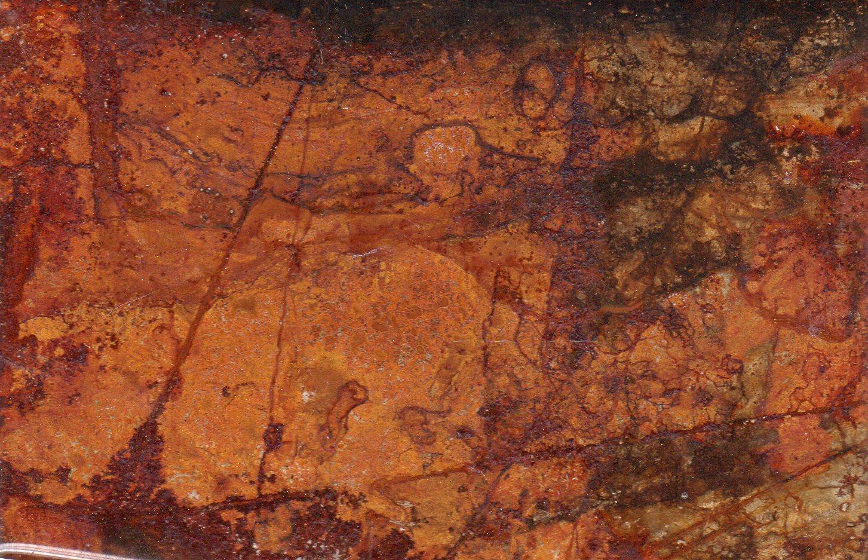 Murals By Marg sketch #1.jpg