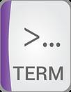b_terminal.png