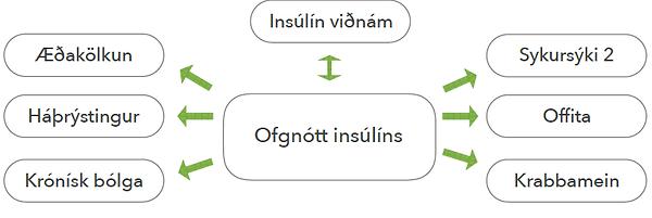 Ofgnótt insúlíns.png