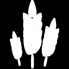 Getreide- und Futtermittel 2