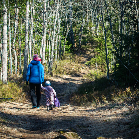 Hiking in Oslo: Top 5 hiking trails accessible by public transport