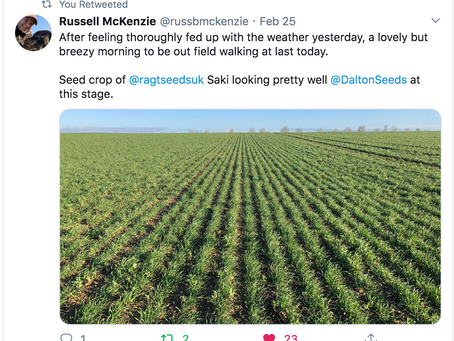 Favourite RAGT Tweets - February 2020