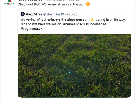 Favourite RAGT Tweets - February 2021