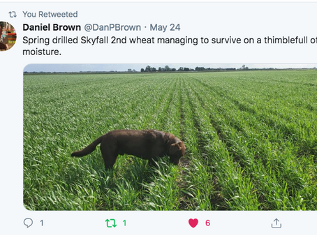 Favourite RAGT Tweets - May 2020