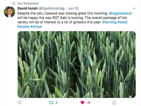 Favourite RAGT Tweets - June 2020