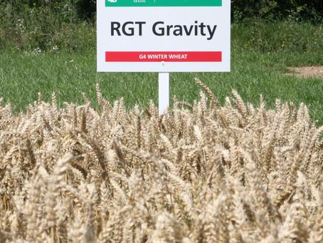 RGT Gravity