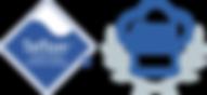 Teflon_DSA_logo no strapline.png