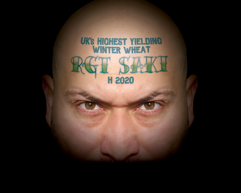 RGT_Saki_Web.png