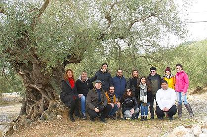El-grupo-de-visita-a-los-olivos-milenari