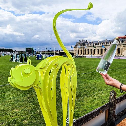 Eau pétillante Masters de Chantilly 2021