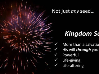 Kingdom seeds and your 'pregnant pauses'