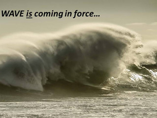 Will you ride or run from the Wave?