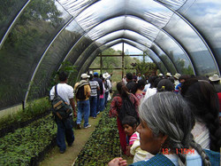 RECORRIDO-CENTEOTL-JULIO-2009-(29).jpg