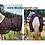 Thumbnail: MagnaCu Blanket