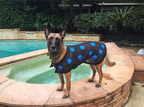 MagnaCu Dog Blanket