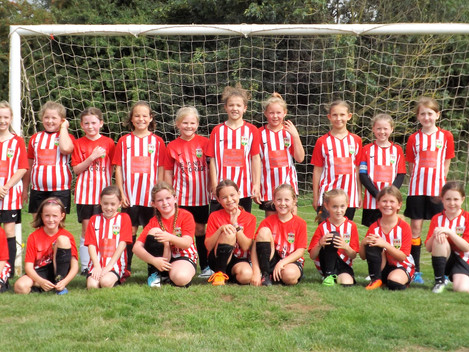 Wildcats programme creates new girls teams