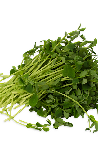 Pea Microgreens