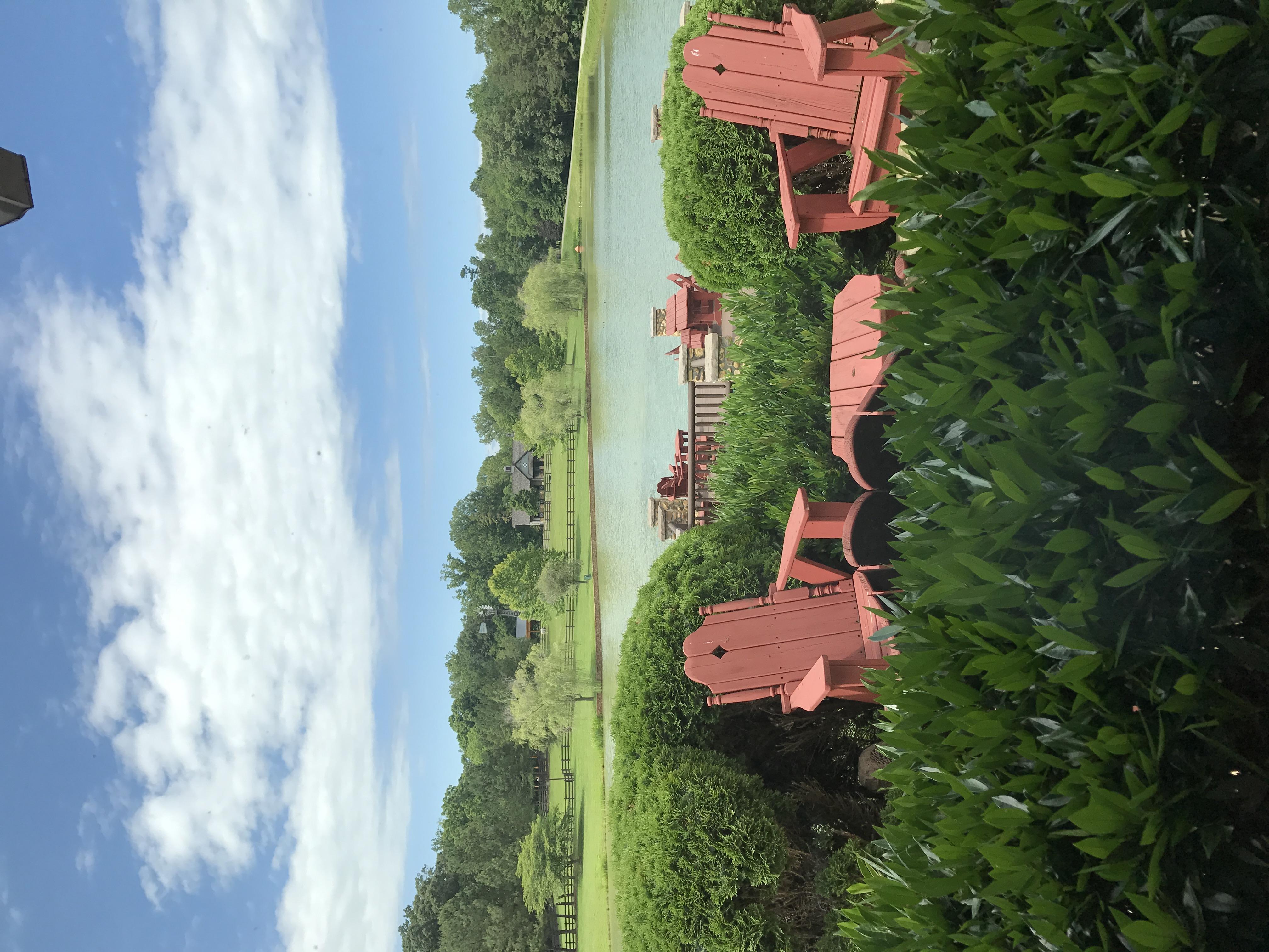 Overlooking Pond.JPG