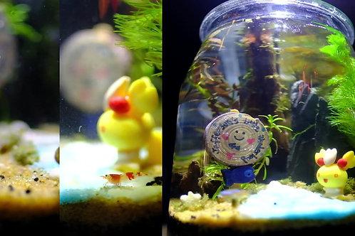 3.3L Jar Nano Aquascaping Art Workshop