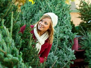 9 секретов красоты живой елки