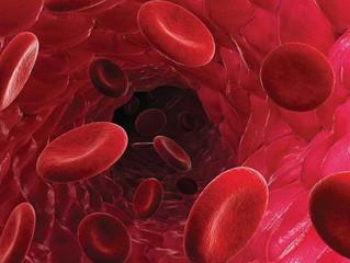 10 продуктов, которые сгущают кровь. С чем быть осторожнее?