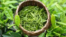 8 полезных свойств зеленого чая