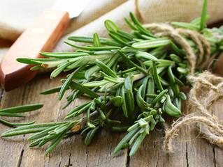 Шесть пряных трав, которые пригодятся вам в кулинарии