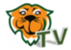 Tiger TV logo.PNG